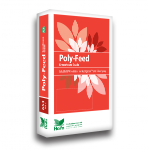 Poly Feed