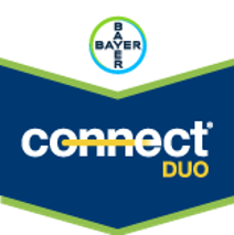 Conect Bayer
